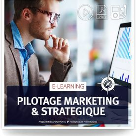 Elearning commercial pilotage marketing strategique