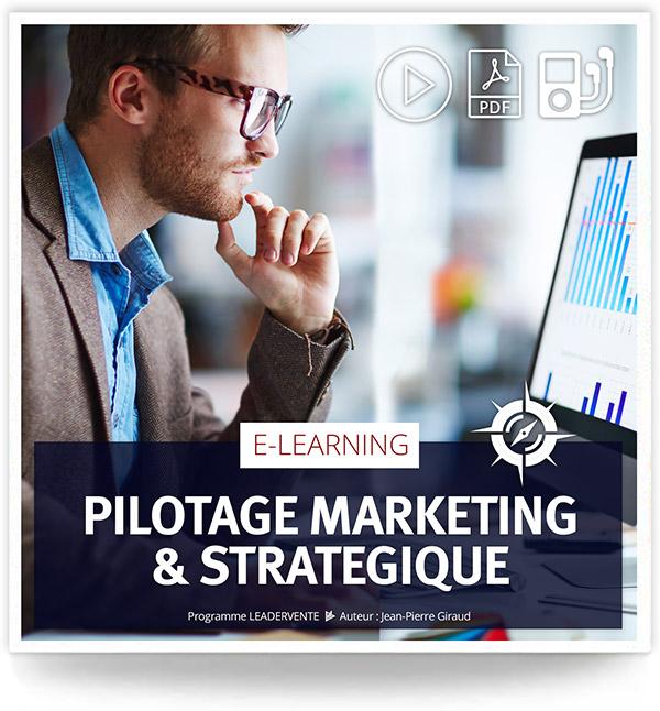 Elearning commercial pilotage marketing strategique